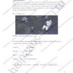 ГДЗ решебник рабочая тетрадь по биологии 5 класс Самкова В.А., Рокотова Д.И. 2016 ответы стр. 17