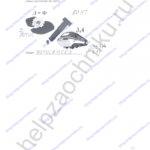 ГДЗ решебник рабочая тетрадь по биологии 5 класс Самкова В.А., Рокотова Д.И. 2016 ответы стр. 23