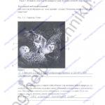 ГДЗ решебник рабочая тетрадь по биологии 5 класс Самкова В.А., Рокотова Д.И. 2016 ответы стр.5