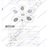 Решебник, ГДЗ по английскому языку 3 класс Кауфман рабочая тетрадь 2 часть стр.35