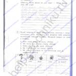 Решебник, ГДЗ по английскому языку 3 класс Кауфман рабочая тетрадь 2 часть стр.38