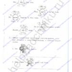 Решебник, ГДЗ по английскому языку 3 класс Кауфман рабочая тетрадь 2 часть стр.9