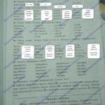 ГДЗ Математика 2 класс Кузнецова (тренировочные примеры по русскому языку стр 11