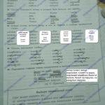 ГДЗ Математика 2 класс Кузнецова (тренировочные примеры по русскому языку стр 13