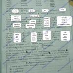 ГДЗ Математика 2 класс Кузнецова (тренировочные примеры по русскому языку стр 19