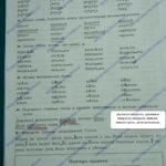 ГДЗ Математика 2 класс Кузнецова (тренировочные примеры по русскому языку стр 24