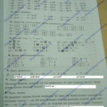 ГДЗ Математика 2 класс Кузнецова (тренировочные примеры по математике) стр.29