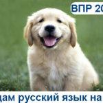 ВПР-2019. Русский язык 8 класс. Варианты с ответами